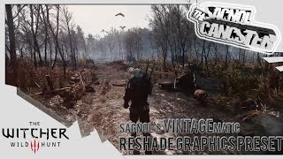 Witcher 3 graphical overhaul on GTX 1070 (Test)