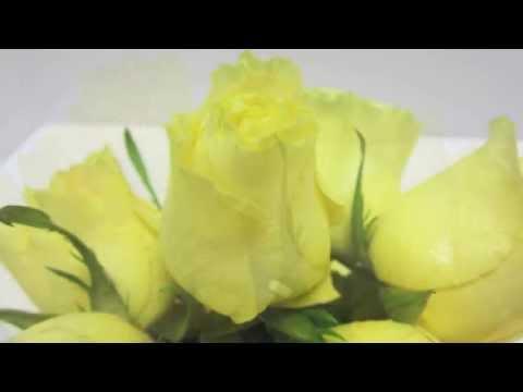 Simple Flower Arrangement Tutorial