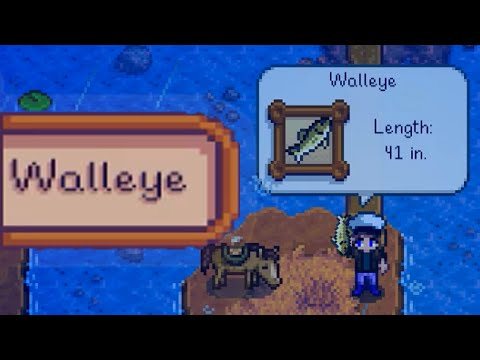WHERE AND HOW TO CATCH WALLEYE Stardew Valley