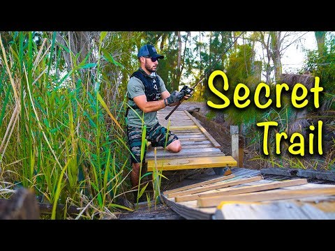 Fishing a Secret Trail in the Florida Everglades!! (Giant Alligator)🐊😱