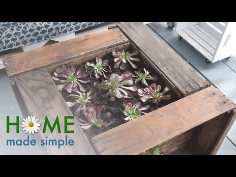 This Succulent-Planter Coffee Table is What Every Backyard Needs | Home Made Simple | OWN