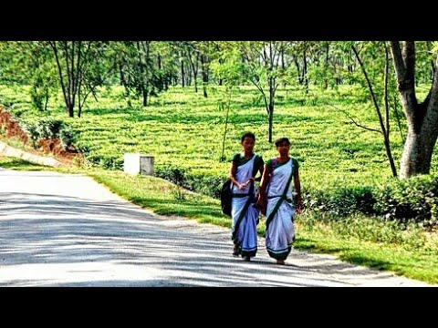 Bongaigaon Best Places For Couples And Tourist | A View Of Bongaigaon