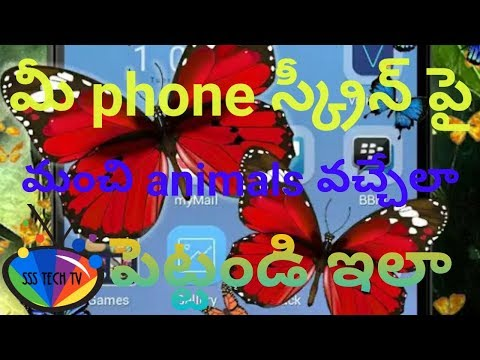 How to set beautiful live animals on android phone screen|In Telugu By SSS Tech TV