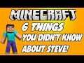 6 THINGS YOU DIDN'T KNOW ABOUT STEVE IN MINECRAFT!