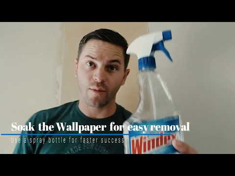 Learn the Ways to Remove Wallpaper and wallpaper removal costs!