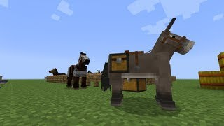 How To Tame A Horse In Minecraft 16