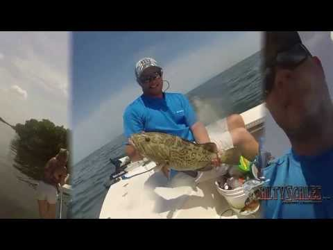 Tampa Bay Grouper & Redfish From a 17ft Flats Boat