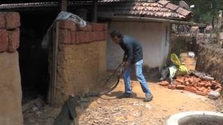 King Cobra Rescue: Safe Methods For Human - Snake Conflict Mitigation
