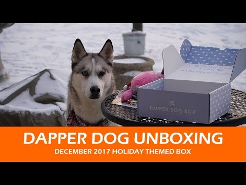 Dapper Dog Unboxing  |  December 2017 Holiday Themed