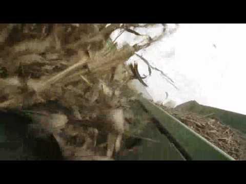 Corn harvest 2011.wmv