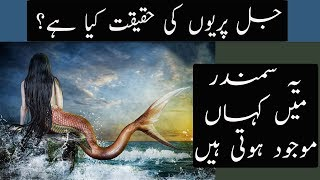 Reality Of Mermaids Explained | Urdu / Hindi