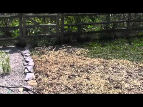Grey Water Wetland & Silt Pond Project Part 2