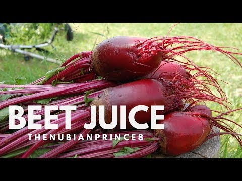 Benefits of Beet Juice YouTube 🍹