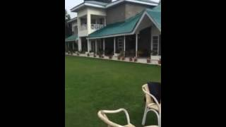 Imran Khan  Playing Cricket With His Sons Yesterday 15th August 2015