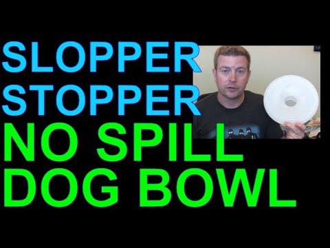 Slopper Stopper Mess Free Dog Bowl Best to Stop Spills Product Review