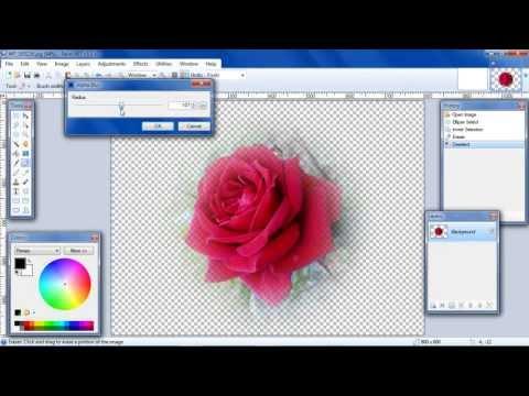 Paint.NET, Fade Edges using Alpha Blur