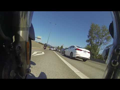 Seattle Has Infuriating Traffic #2 : Taurus and Jag
