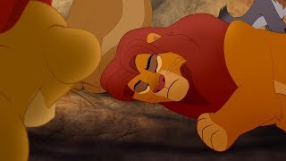 Download The Lion Guard: Simba stung by a scorpion | The Scorpion's Sting Video