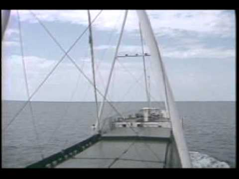 Sail Freight International - Aux Wind Propulsion for Merchant Ships