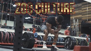 Up At 5am Ep 6 7 Training At Zoo Culture Gym Bradley Martyn