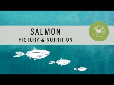 Superfoods - Salmon History and Nutrition