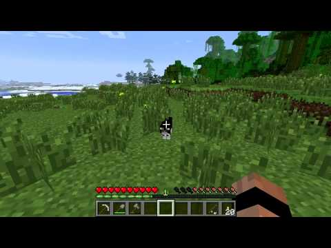 Minecraft Mobs: Ocelots and Cats