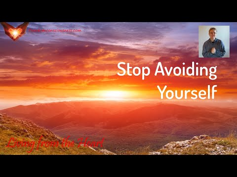 Stop Avoiding Yourself Insight (Living from the Heart Series)