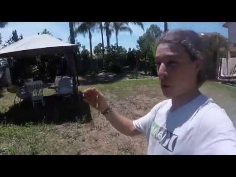 Tour Through the Bio Intensive Mini Farm- KNF Style