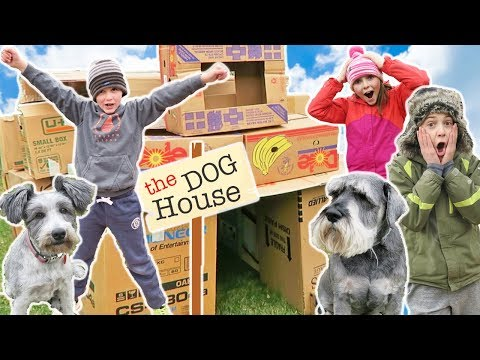 Dog House Box Fort Mansion | Creative Kids Build With Cardboard