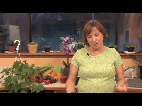 Gardening & Plant Care : Making a Whiskey Barrel Water Garden