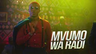 ALIKIBA - Mvumo Wa Radi (Official Video)
