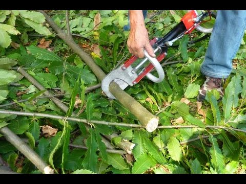 Silent machine for cutting branches, safe and easy