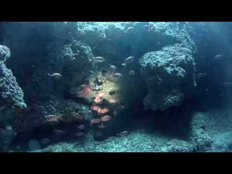 GoPro Okinawa Ie Island Diving 2013/08/28