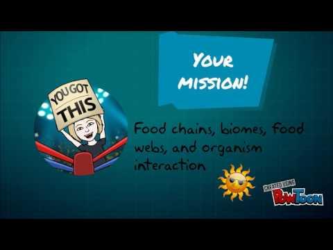 Food Web Rap Assignment 17