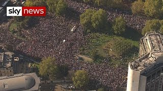 Hundreds of thousands attend Brexit march in London