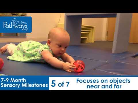 7 to 9 Month Sensory Milestones to Look For