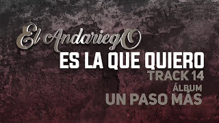 14. Es La Que Quiero - El Andariego - Con Letra [Musica Popular]