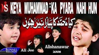 Kiya Muhammad Ka Pyara Nahi Hun | Ali Shanawar & Ali Jee  | 2008