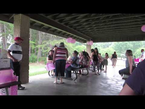 Baby Shower in the Park