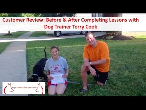 Customer Review After Completing Columbus Ohio Dog Training Lessons with Terry Cook