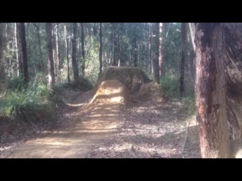 Backyard Dirt Jumps Edit