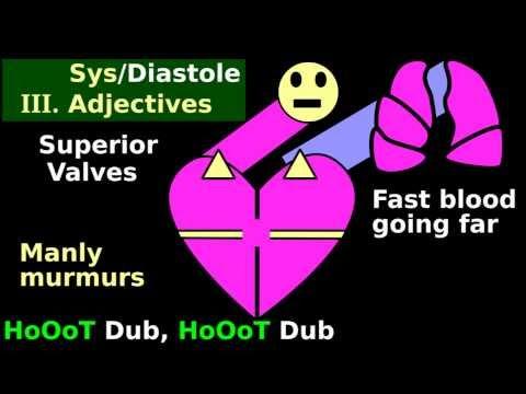 Cardiac Murmur Auscultation: Quick/Easy heart stethoscope identification tutorial