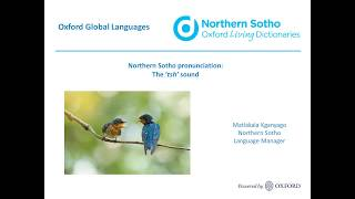 Oxford Northern Sotho dictionary: the 'tsh' sound