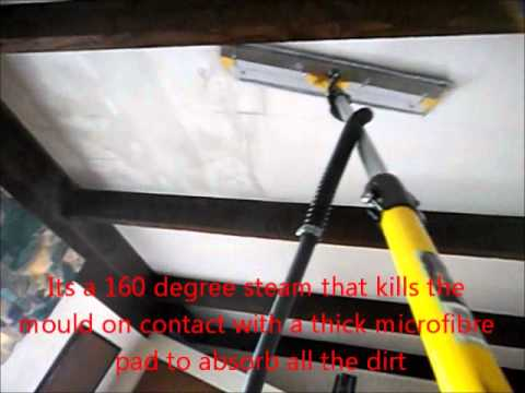 bedroom mould ceiling clean