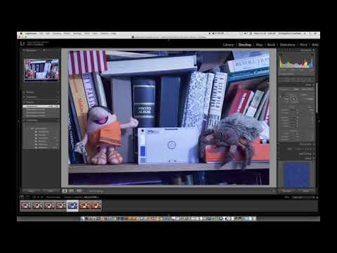 How to Set White Balance With RAW Files in Lightroom and Other Editing Software