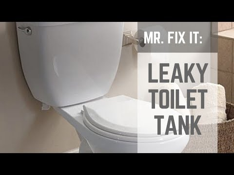 HOW TO | Fix a Leaky Toilet Tank: Nuts & Bolts
