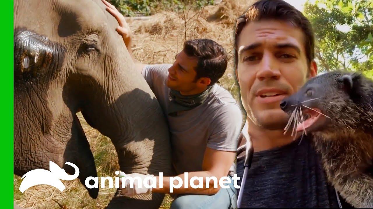 Dr. Evan Bonding With Animals   Evan Goes Wild