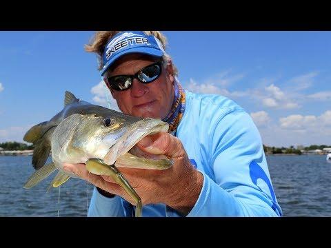 Monster Snook Fishing Florida Everglades National Park