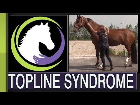 Recognizing Topline Syndrome