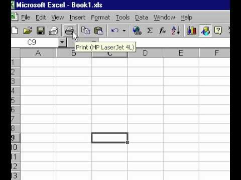 Microsoft Office Excel 2000 open toolbar icon explanations